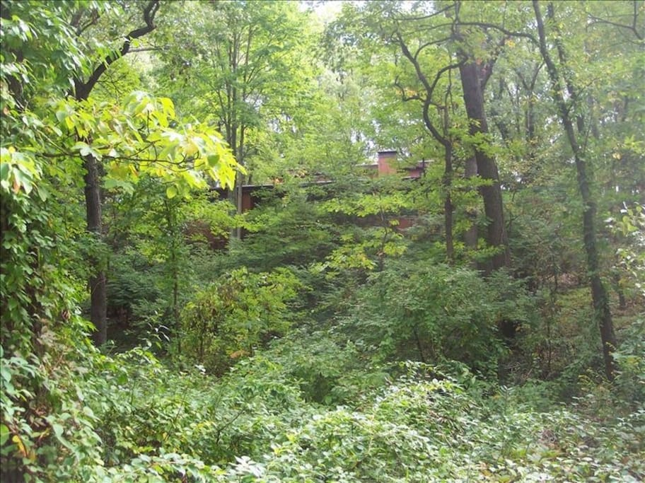 Indiana dunes beach retreat vacation homes for rent in beverly shores indiana united states - Large summer houses energizing retreat ...