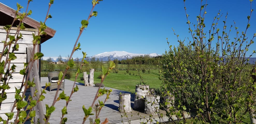 Great view to the famous volcano Eyjafjallajokull