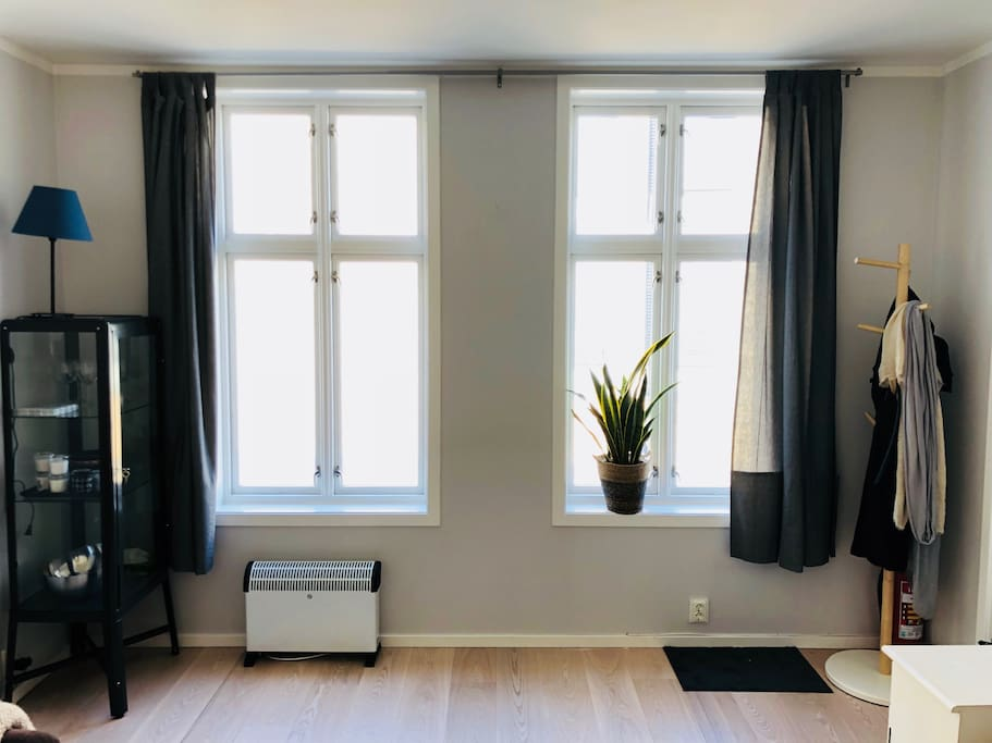 large windows in the entire apartment allow for a lot of light even on rainy days