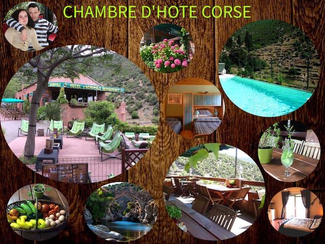 CHAMBRE CONFORT 7 ACROPOLE ASCO