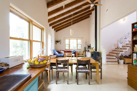 spacious house on galil mountain - Harashim