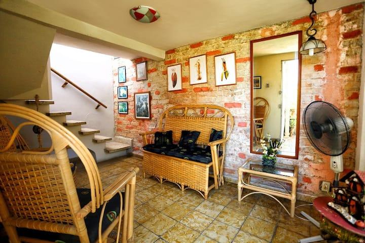 The little terrace of vedado