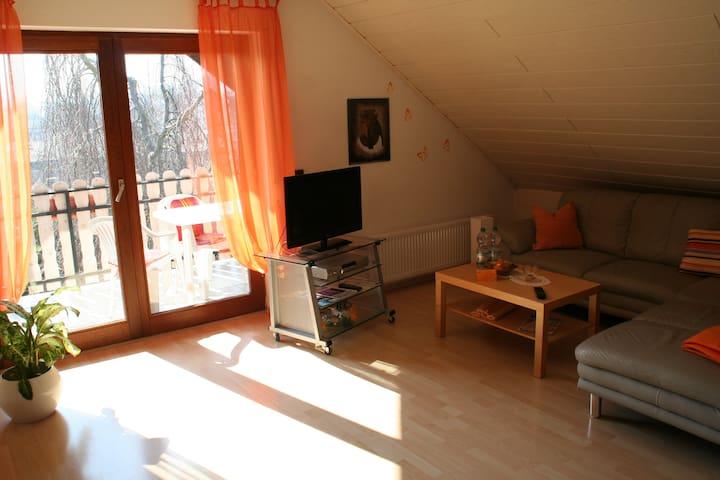 Rosi`s Ferienwohnung - Plaidt - Lejlighed