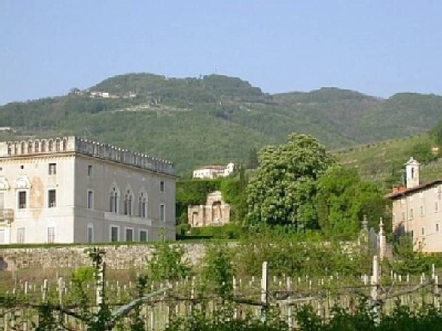 Il Castello from below, seen from Villa Rizzardi