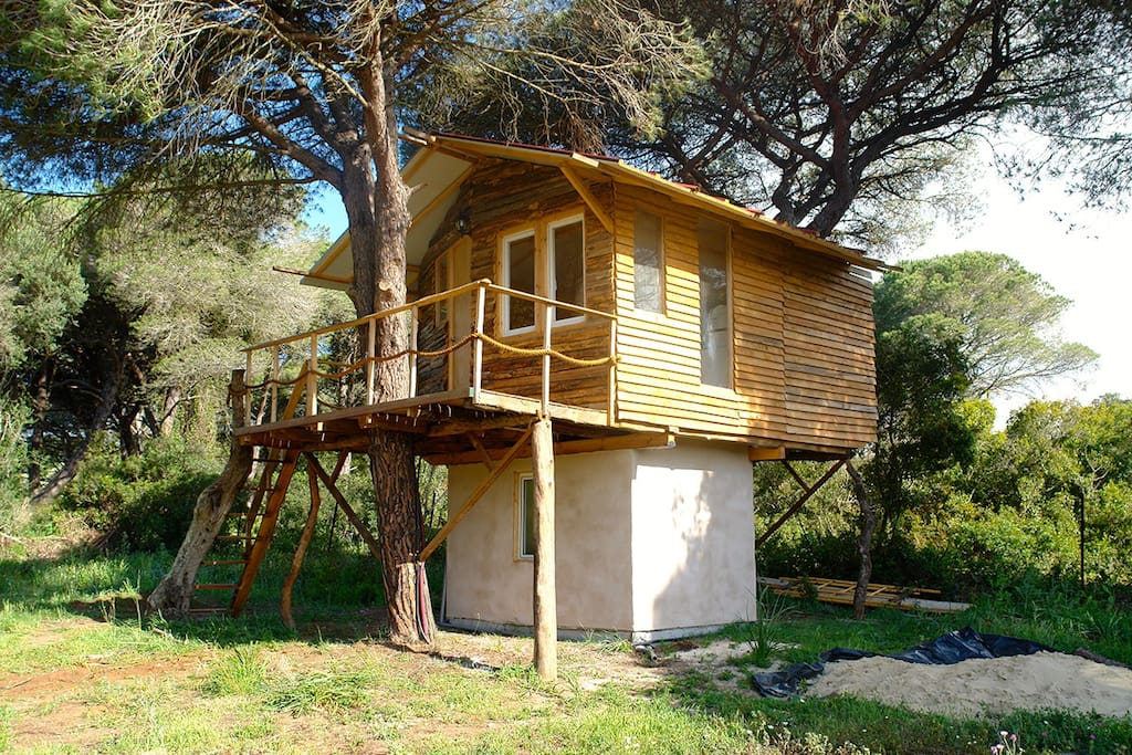 elf tree house andaluc a spain cabanes dans les arbres louer vejer de la frontera. Black Bedroom Furniture Sets. Home Design Ideas