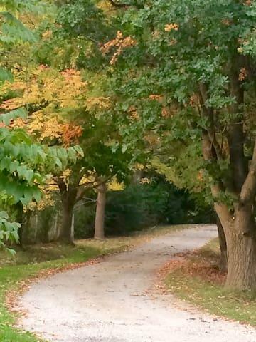 Driveway to Retreat House