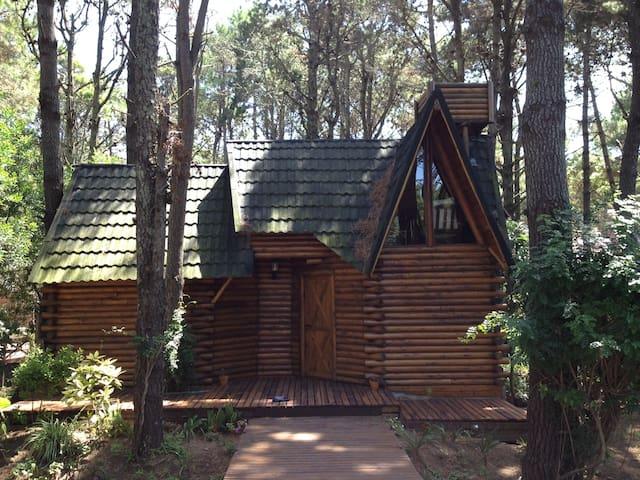 Cabaña Macondo  Paz en el bosque