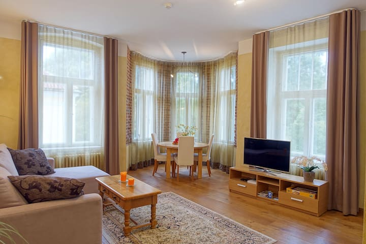 Comfortable apartment in center of Tartu