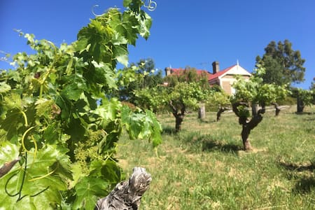 Tarrah Mhor Barossa - your own vineyard cottage - Flaxman Valley