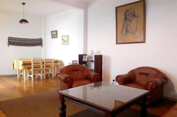 Spacious & lovely apartment San Telmo, Lezame Park