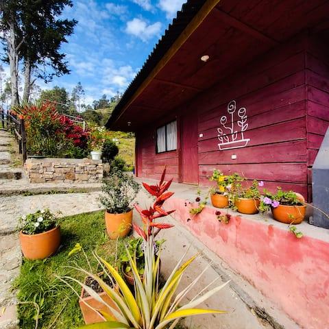 Acogedora cabaña en Escala 100 organicfarm