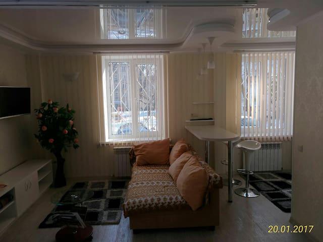 Уютная квартира-студия на 1 этаже - Chișinău - Flat
