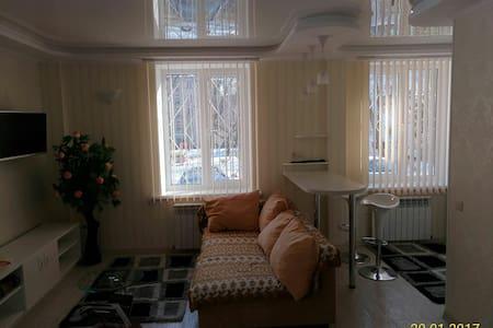 Уютная квартира-студия на 1 этаже - Chișinău - Huoneisto