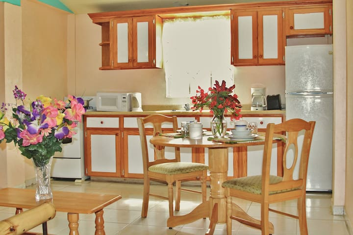 Caribbean Holiday Apartments - Saint John's - Flat