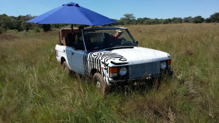 Cozy spot in Africa's, bushveld.