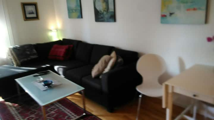 Nice 2 bedroom apt in idyllic area near Oslo