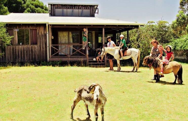 Billa Billa Farm Cottages