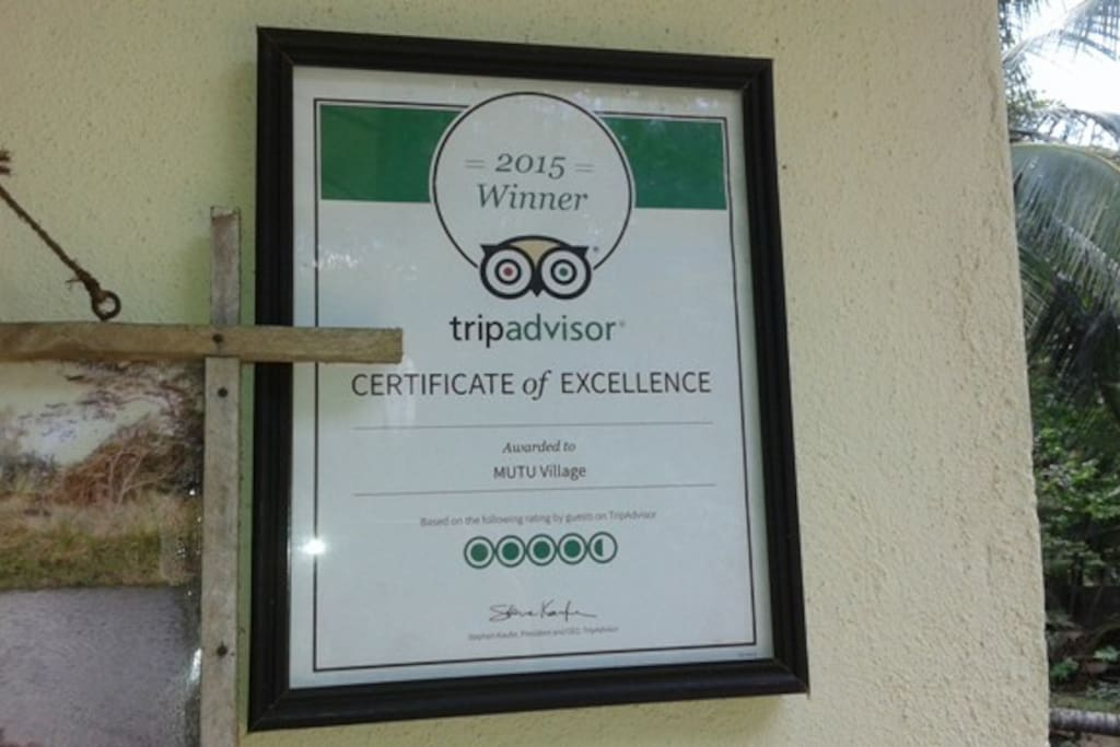 certificate of excellence from tripadvisor