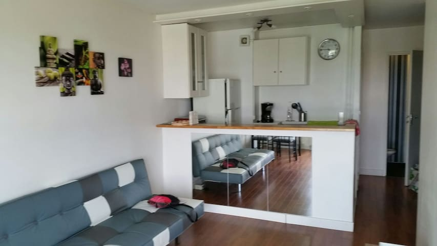 Bel appartement entre Paris et Disney au calme - Le Raincy - Apartament