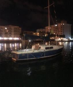 Sleep on the Water 22 Morgan - Miami Beach - Barco