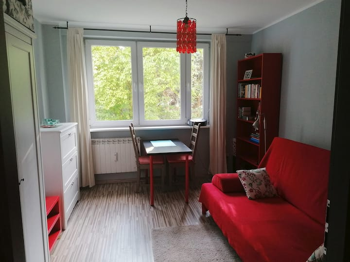 Sunny lovely apartment near Chopin Airport WiFi TV