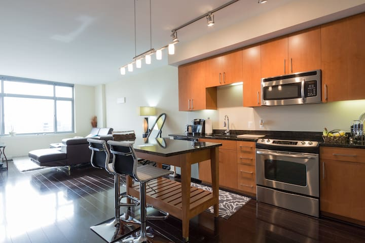 Luxury 1 BR Apt near US Capitol and Union Station - Washington - Apartamento