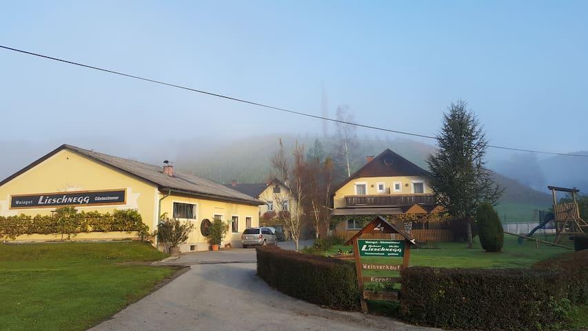 Weingut-Gästezimmer-Lieschnegg Hubert und Heike