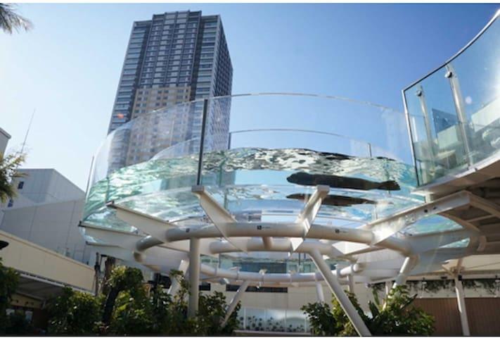 著名的阳光大厦