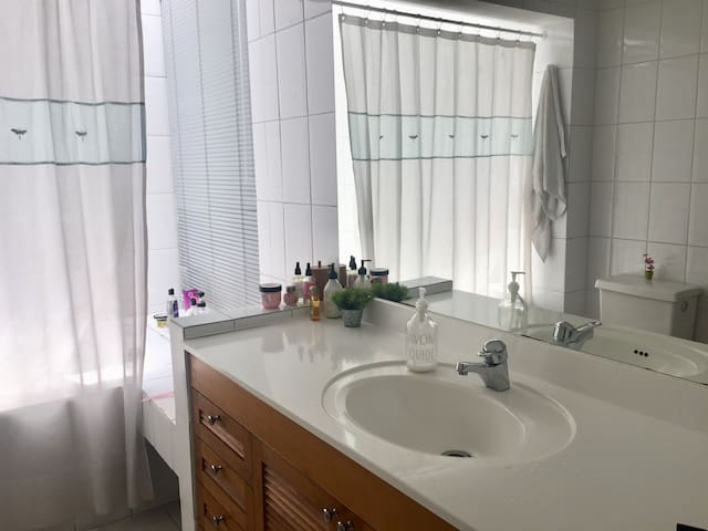Baño dormitorio principal en suite