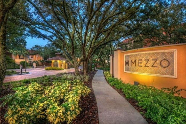One bedroom apartment at Mezzo of Tampa Palms*