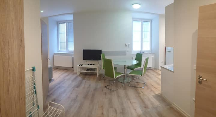 Nice apartment for 4 in center of Maribor
