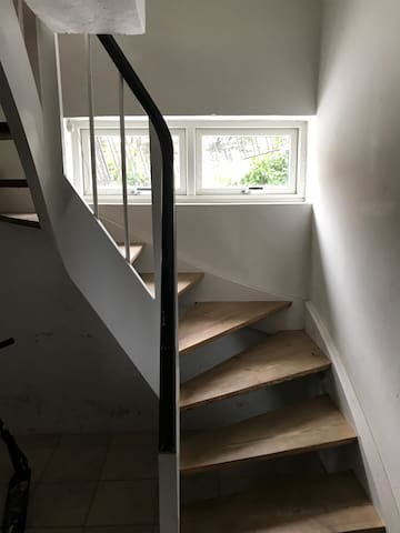 Stair case to basement