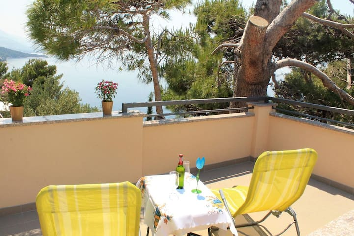 Two bedroom apartment with terrace and sea view Brela (Makarska) (A-790-a)