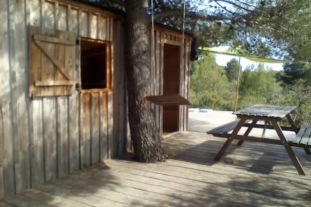 La cabane de MANON, le retour aux sources