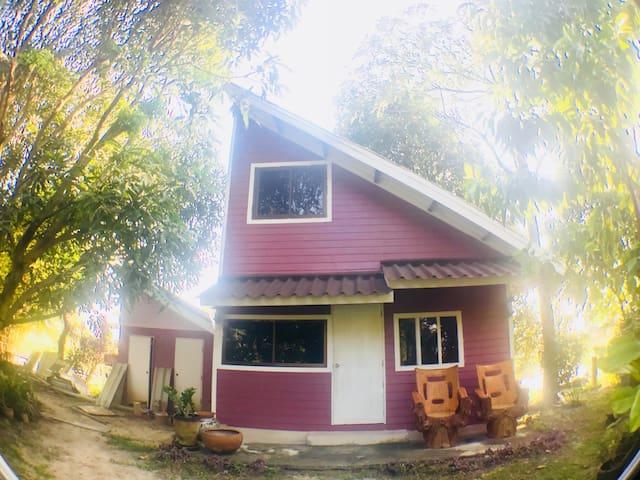 Nature bungalow house,fishing บังกาโล ชั้นเดียว 中文房东
