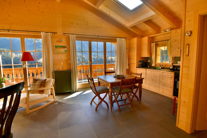 Chalet in Champéry: skiing,hiking,mountain biking