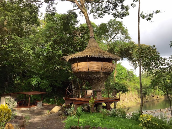 Tree-house Experience on a river