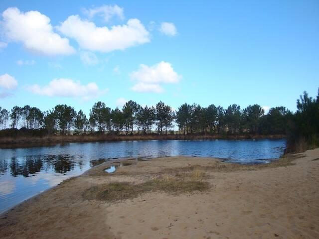 villa bois  proche lac, forêt, golf, plage - Lacanau - Villa