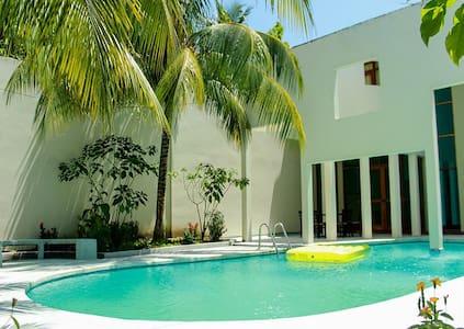 AMAZONIA HOUSE  & JUNGLE TOURS - Iquitos