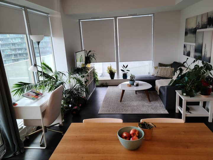 Lovely room in the heart of the Canary District