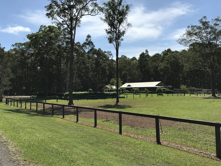 Our paddock