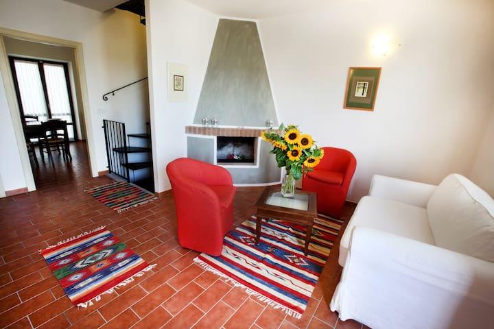 Borgo Degli Ulivi Trilocale - Grosseto - Apartemen