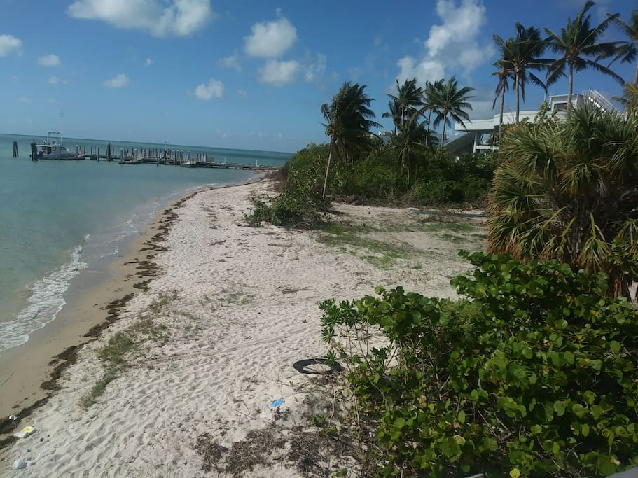 tropical private islands in key Biscayne..