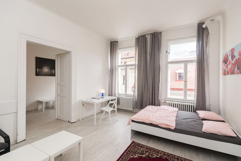 large 3 bedroom apartment boasts nice views from the windows and very spacious rooms in the very center of Prague