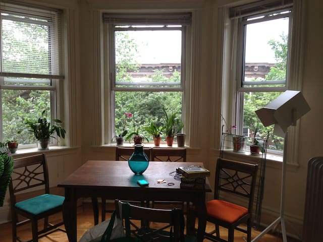 Cozy 1BR/1Bath apartment in Fenway - Boston - Flat