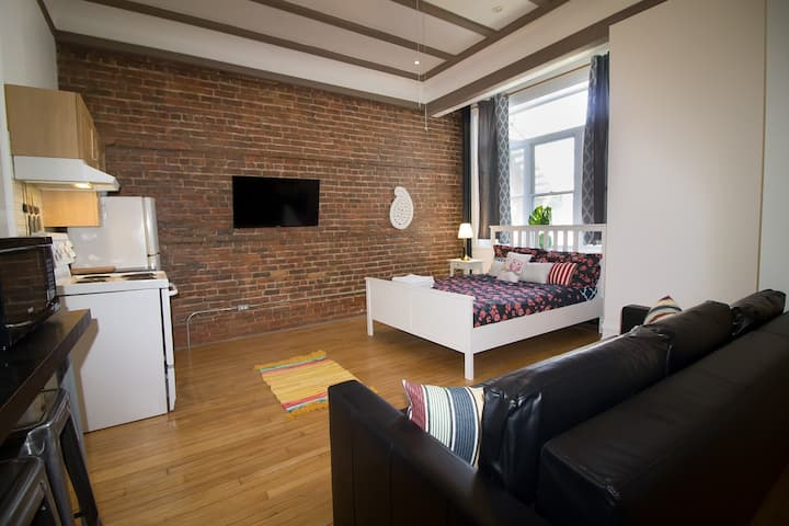 Fancy Modern Loft Close to Metro/DT/ Hospital