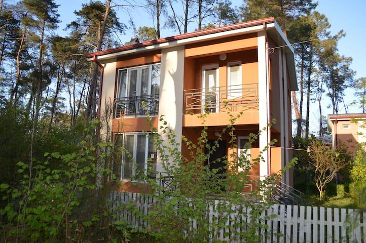 Home in Shekvetili 3
