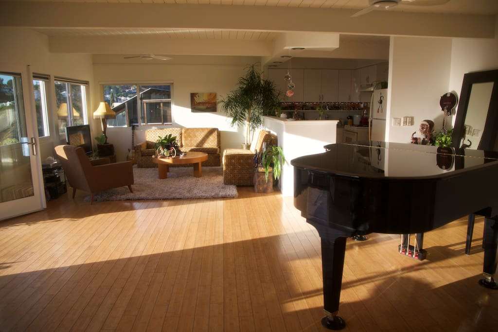 view of living room with grand piano