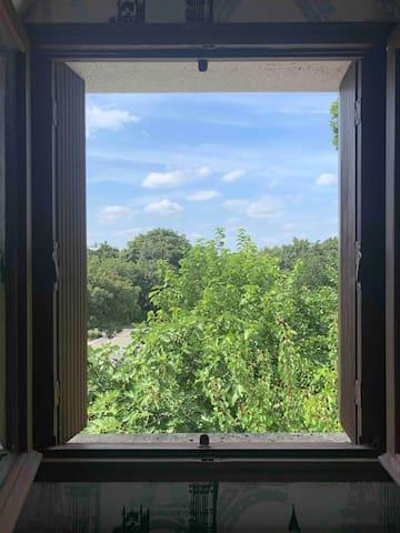Vue de la chambre sur jardin de Nada