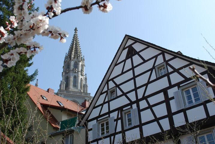 Zi. 1: Fachwerkhaus am Münsterplatz, 5 Min zum See